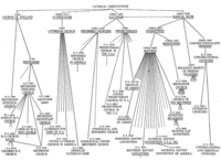 Family Tree Of Churches, n.d. (PDF)
