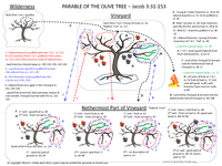 Parable Of The Olive Tree Diagram